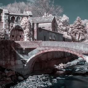 Infracastle by Carlos Cardoso - Buildings & Architecture Statues & Monuments ( ir, castle, infracastle, portugal, river )