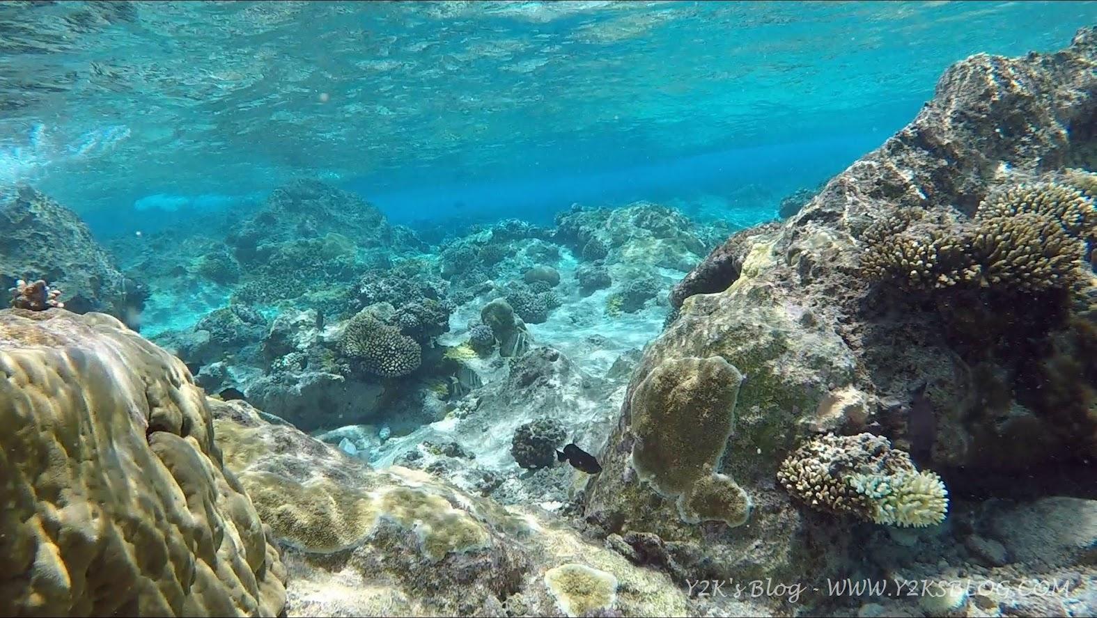Le trasparenze del mare di Niue
