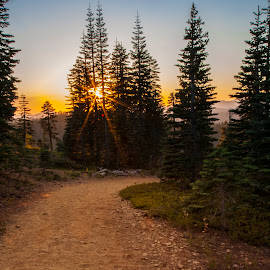Down the Trail by Mike Lee - Landscapes Sunsets & Sunrises ( trail, mountain, sierra buttes, sierra buttes lookout, outdoors, nature, sunset, hiking, hike )