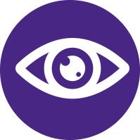 Simplified Eye Illustration