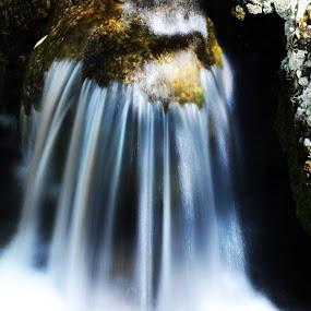 Rodos by Pol Lo Schienato - Nature Up Close Water