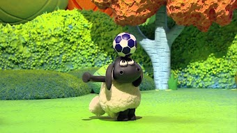 Timmy Plays Ball