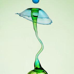 The Sperm by Salahudin Damar Jaya - Abstract Water Drops & Splashes ( hsp, water drop )