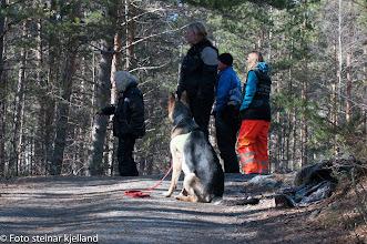 Photo: Bjørnulvs Second Chance (Caos) og Torhild gjør seg klare for rundering.