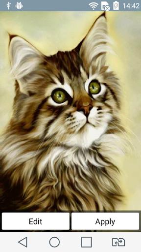 Fluffy cat live wallpaper