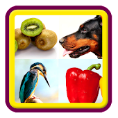 Kids: Animal, Bird, Fruit Name