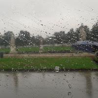 Una giornata di pioggia di