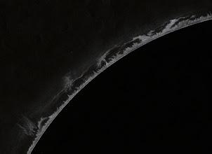 Photo: Nombreuses protubérances, vues le 5 juin 2010 à 9H20TU au Coronado SM60 à 90X. Inversion des couleurs sous logiciel Photofiltre.