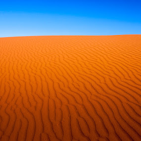 Red Sea by Brett Florence - Landscapes Deserts ( isolated, sand, desert, blue sky, lonely, alone )