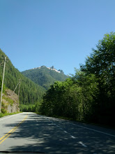 Photo: The road to Tofino is lined on all sides by breathtaking natural beauty
