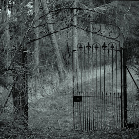 Gates at Craigston by Norma Evans - Novices Only Landscapes
