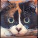 Куки Кот - Androidアプリ
