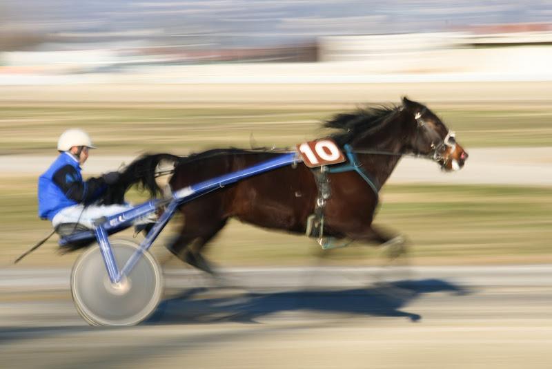 crazy horse di Paolo Caruso