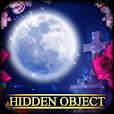 Hidden Object Adventure - Midnight Magic