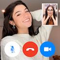 Charli d'amelio - fake chat - video call icon