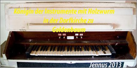 Photo: frische Holzwurmspuren beschmutzen die Königin der Instrumente in unserer Dorfkirche in Goldenbaum