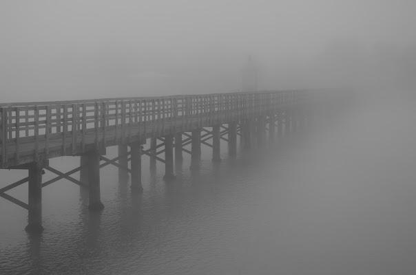 Là dove sorge la nebbia di Alessandro Marani