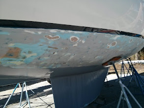 Photo: String of small blisters discovered along the starboard side just below the waterline.