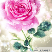 Happy rose day live wallpaper