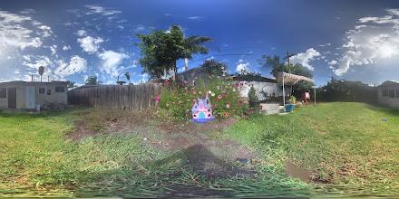 Photo: Fairy garden