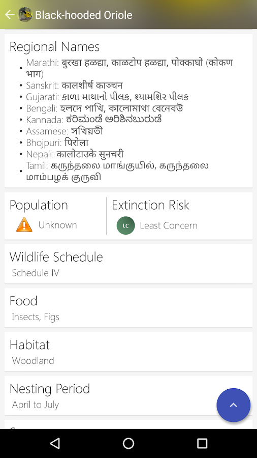 Indian Birds- screenshot
