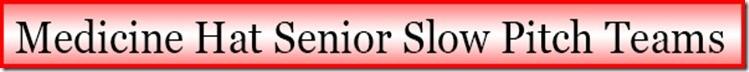 Senior Team Banner