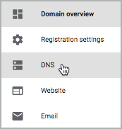 Under Domain overview, DNS is selected.