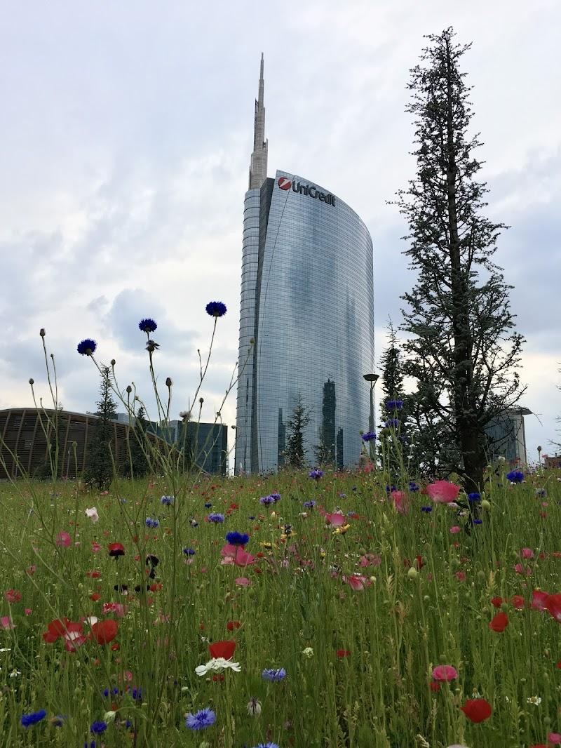 Primavera a Milano di GiorgioBortolini