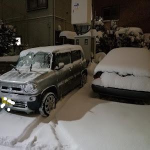 Kei HN22S Bターボのカスタム事例画像 川崎さつきさんの2018年12月09日19:56の投稿