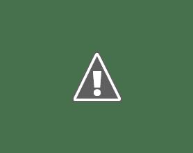 Photo: La entrada del pueblo adornada con flores - © Rubén Asín Abió