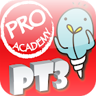 PT3 PMR icon