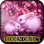 Hidden Object - Sweetheart