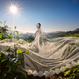 Bride in the sunshine by Andrew CM Ng - Wedding Bride ( wedding, andrewng1005, cameron, malaysia, photography )