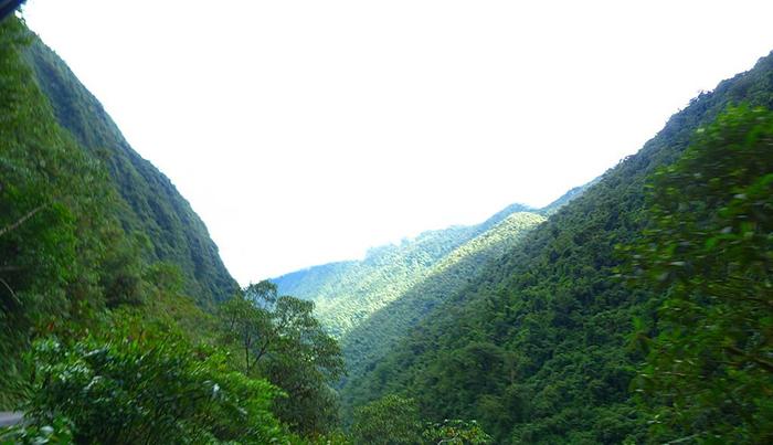Pozuzo Parque Nacional Yanachaga Chemillen