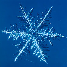 Photo: Snowflakes are formed when updrafts carry water droplets through a cloud base to heights within the cloud where the temperature is below freezing. There the droplets form ice crystals by condensing onto tiny dust particles or other ice nuclei. The crystals grow as water vapor accumulates on them and as they fall and collide with supercooled water droplets (droplets that remain liquid at temperatures below freezing until they encounter a surface on which to form ice). Snowflakes may also resemble plates or columns, depending on the cloud-level temperature and the strength of updrafts. Larger snowflakes are usually clusters composed of many smaller ice crystals.