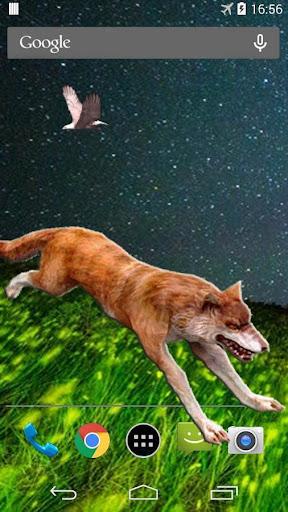 Wild Wolf 3D