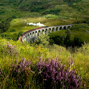 Glenfinnan viaduct, Scotland by Chris Duffy - Landscapes Mountains & Hills ( scotland, steam train, viaduct, train, harry potter, bridge, steam,  )