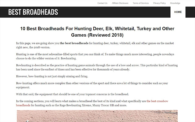 Best Broadheads for Hunting Deer