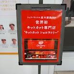 kitkat chocolatory in Tokyo, Tokyo, Japan