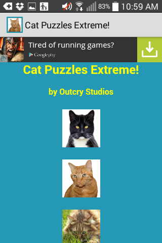 Cat Puzzles Extreme