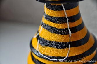 Photo: ZD - Ł pszczoła 2