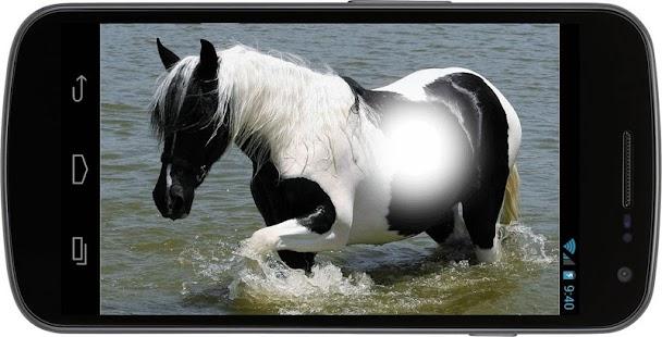 Horse Selfie Photo Frames - náhled