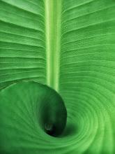 Photo: Blog background