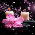 Pink Flower Candle LWP