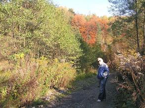 Photo: DA190377 Dolina Kobylanska - jesien