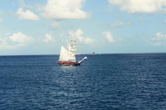 Photo: #004-Dans les eaux des Tobago Cays
