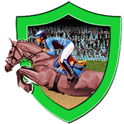 Cowboy Freestyle  Horse Racing