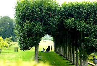 Photo: Englische Parklandschaft
