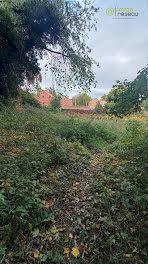 terrain à Solesmes (59)
