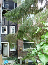 Photo: Blick aus dem Garten auf die Rückfront